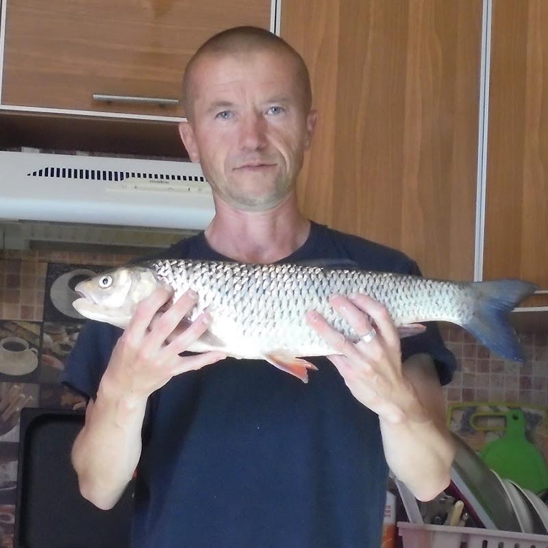 Прогноз клева для рыболовов - Великий Устюг